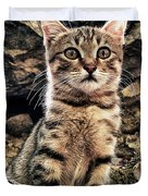 mediterranean wild babe cat Duvet Cover by Stylianos Kleanthous