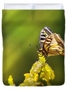 Monarch Butterfly Duvet Cover by Carlos Caetano