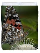Painted Lady Butterfly Din049 Duvet Cover by Gerry Gantt