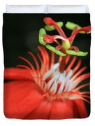 Passiflora Vitifolia - Scarlet Red Passion Flower Duvet Cover by Sharon Mau