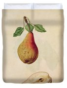 Pear   Pyrus Communis Duvet Cover by J le Moyne de Morgues