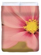 Petaline - p05a Duvet Cover by Variance Collections