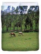 Petaluma Pasture Duvet Cover by Kathy Yates