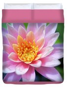 Pink Water Lily Duvet Cover by Kicka Witte