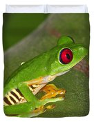 Red-eyed Leaf Frog Duvet Cover by Tony Beck