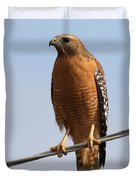 Red-shouldered Hawk . 7d10246 Duvet Cover by Wingsdomain Art and Photography