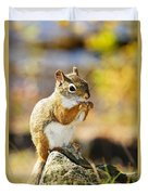 Red Squirrel Duvet Cover by Elena Elisseeva