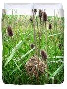 Red-winged Blackbird Nest Duvet Cover by J McCombie