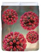 Rubella Virus Particles Duvet Cover by Russell Kightley