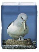 Salvins Albatross Thalassarche Salvini Duvet Cover by Tui De Roy