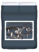Seagulls Gathering Duvet Cover by Debra  Miller