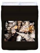 Seashells Duvet Cover by Hakon Soreide