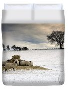 Sheep In Field Of Snow, Northumberland Duvet Cover by John Short