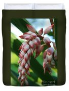 Shell Ginger Alpinia Zerumbet Tropical Flowers Of Hawaii Duvet Cover by Sharon Mau