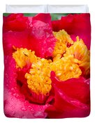 Show Off Duvet Cover by Rich Franco