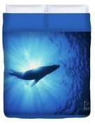 Silhouette Of A Sea Lion, La Paz Duvet Cover by Beverly Factor