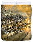 Skeletons At Sunset Duvet Cover by Debra and Dave Vanderlaan