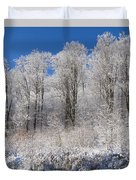 Snow Covered Maple Trees Iron Hill Duvet Cover by David Chapman