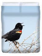 Song Of A Red-winged Blackbird Duvet Cover by Ellie Teramoto