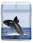 Southern Right Whale Duvet Cover by Francois Gohier and Photo Researchers