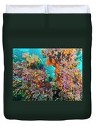 Spotted Goldring Surgeonfish And Coral Duvet Cover by Beverly Factor