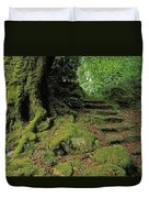 Steps In The Wild Garden, Galnleam Duvet Cover by The Irish Image Collection