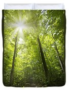 Sunny Forest Path Duvet Cover by Elena Elisseeva