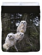 Three Great Horned Owl Bubo Virginianus Duvet Cover by Richard Wear