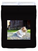 Toby Old Mill Cat Duvet Cover by Sandi OReilly