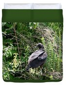 Turkey Vulture - Buzzard Duvet Cover by EricaMaxine  Price