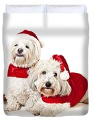 Two Cute Dogs In Santa Outfits Duvet Cover by Elena Elisseeva
