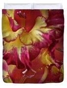 Vibrant Gladiolus Duvet Cover by Susan Herber