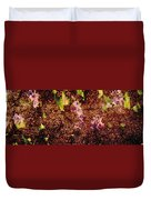 Water Flowers Vietnam Duvet Cover by Skip Nall