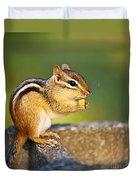 Wild Chipmunk  Duvet Cover by Elena Elisseeva
