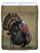 Wild Turkey Male North America Duvet Cover by Tim Fitzharris