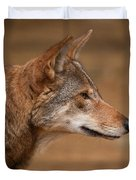 Wile E Coyote Duvet Cover by Karol  Livote