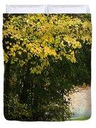 Dun Na Ri Forest Park, County Cavan Duvet Cover by Peter McCabe