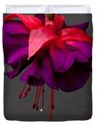 Fuchsia Duvet Cover by Dawn OConnor