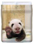 Giant Panda Ailuropoda Melanoleuca Cub Duvet Cover by Katherine Feng