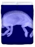 Veiled Chameleon X-ray Duvet Cover by Ted Kinsman