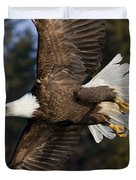 Bald Eagle Duvet Cover by John Hyde - Printscapes