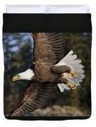 Bald Eagle Duvet Cover by John Hyde - Printscapes