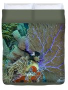 A Bi-color Damselfish Amongst The Coral Duvet Cover by Terry Moore
