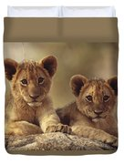 African Lion Cubs Resting On A Rock Duvet Cover by Tim Fitzharris
