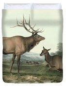American Elk Duvet Cover by John James Audubon