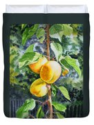 Apricots In The Garden Duvet Cover by Irina Sztukowski
