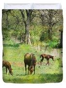 Spring Colts Duvet Cover by John Robert Beck