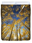 Aspen Tree Canopy 3 Duvet Cover by Ron Dahlquist - Printscapes