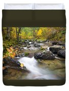 Autumn Passing Duvet Cover by Mike  Dawson