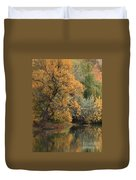 Autumn Riverbank Duvet Cover by Carol Groenen